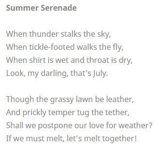 Summer Serenade